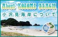 小沢見海岸について